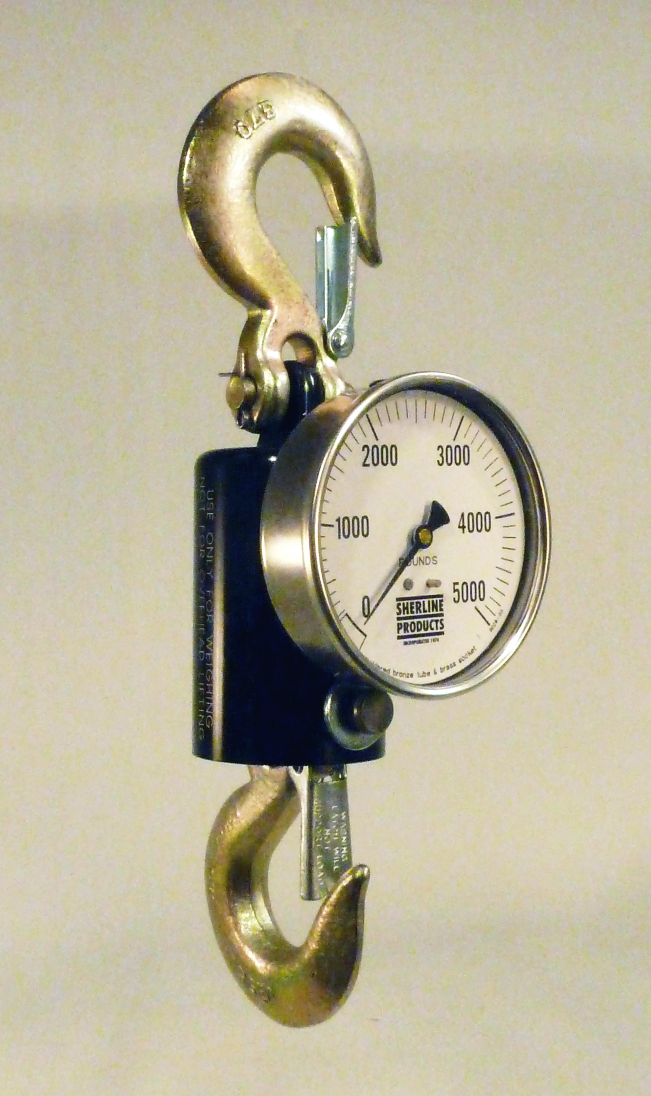 hydraulic crane scale